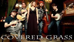 Covered Grass - Bluegrass
